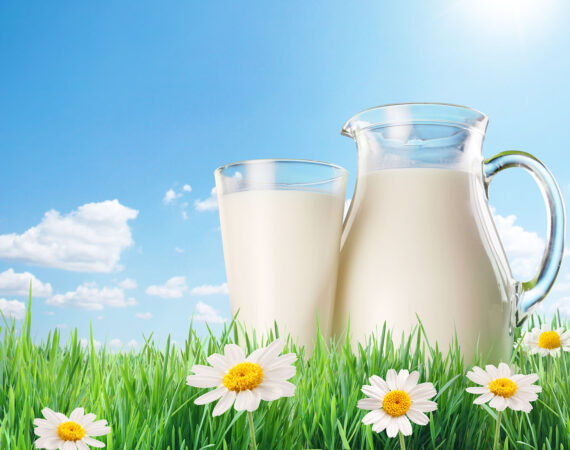 Ceny skupu mleka w marcu 2021 r.
